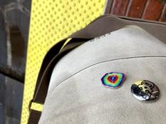Image of Rainbow Pins