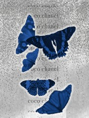 Image of butterfly fly away