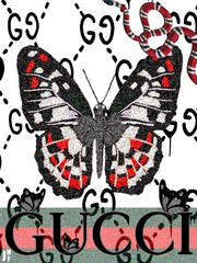 Image of gucci butterfly