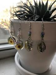 Image of Oval Pressed Flower Earrings