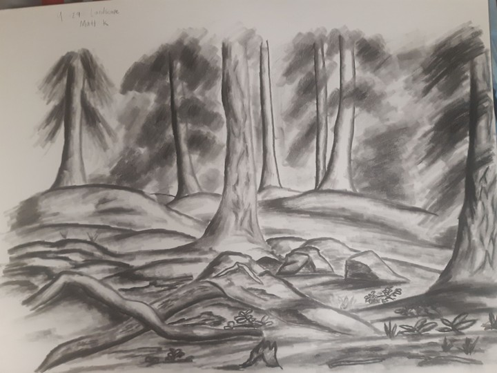 Image of Forest Landscape in Charcoal