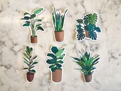 Image of House Plant Matte Vinyl Sticker Decal Pack