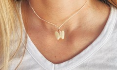 Image of Coquina Butterfly Shell Necklace