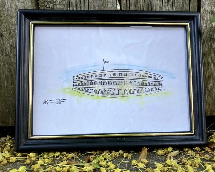 Image of Harvard Stadium Drawing