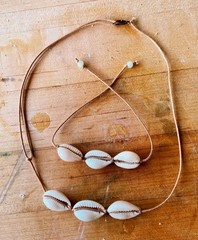 Image of Pukka Shell Necklace/Bracelet