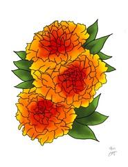 Image of Marigolds